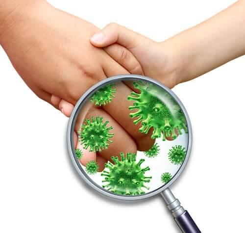 לחיצת ידיים מעבירה חיידקים