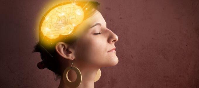 חרדות והמוח